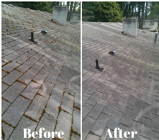 Roof cleaning monroe