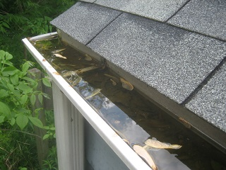 Roof and Gutter cleaning Monroe